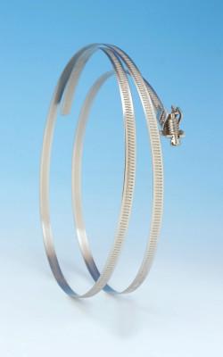 Schnellverschluss-Schelle 7mm Band Rostfreier Stahl (W4) 355mm